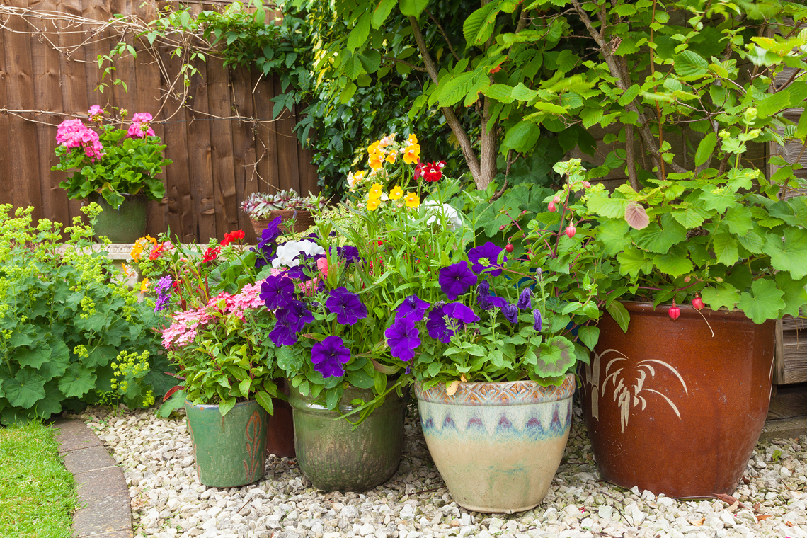 Make your garden, property or home look fantastic with William Mackay products