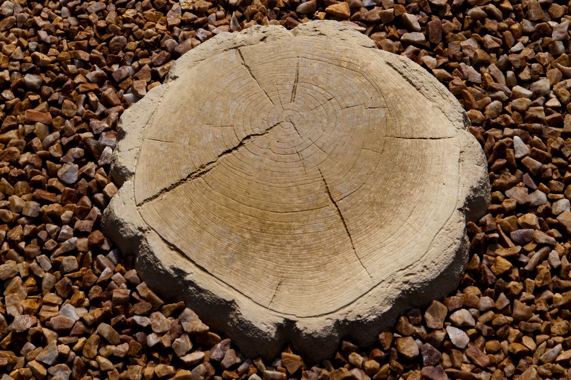 Wood Stone Stepping Stones